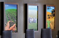 Etched Glass Polymeric Film Applicatie - Pub Demaille