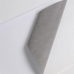 Hexis V240WG1 Polymeer printmedia 45m x 1370mm