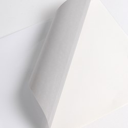 Hexis V3000WG Monomeer printmedia 45m x 2000mm