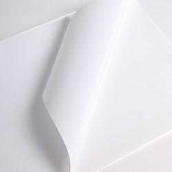 Hexis V3001WG Monomeer printmedia 45m x 1600mm