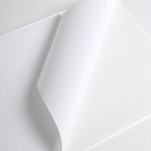 Hexis V3001WG Monomeer printmedia 45m x 1600mm-1