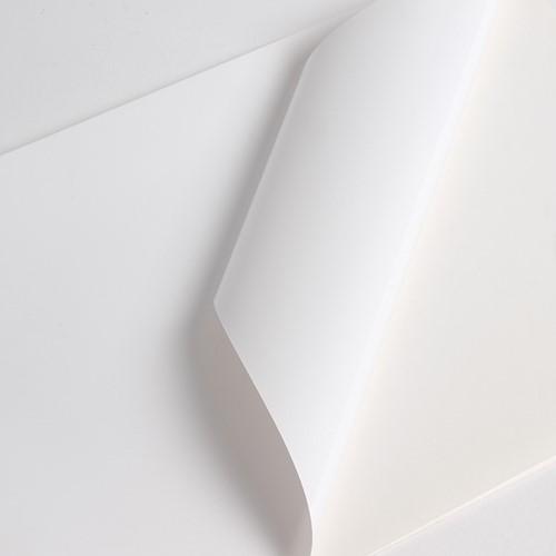 Hexis V3001WM Monomeer printmedia 45m x 1600mm