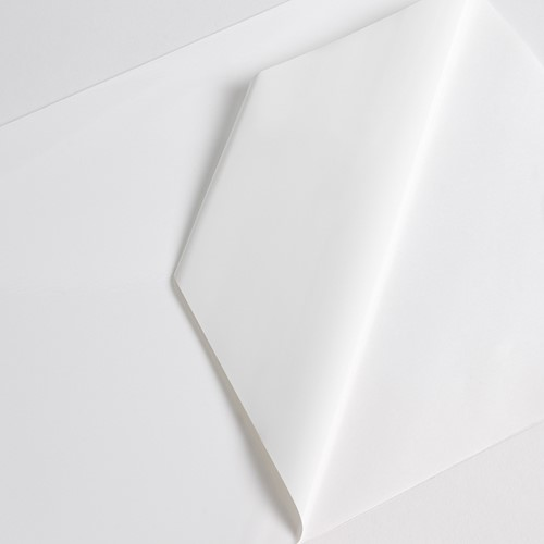 Hexis VCXR101WG1 Gegoten printmedia 1m x 1370mm-1