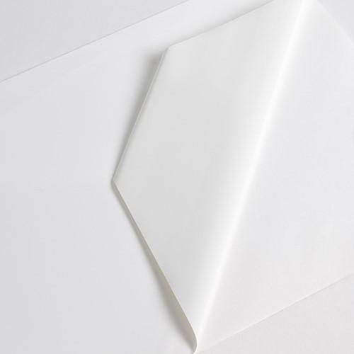 Hexis VCXR101WG1 Gegoten printmedia 1m x 1370mm